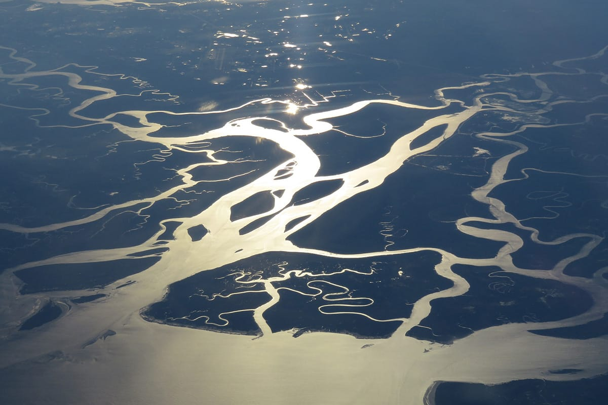 aerial-view-of-florida-everglades-wetlands.jpg